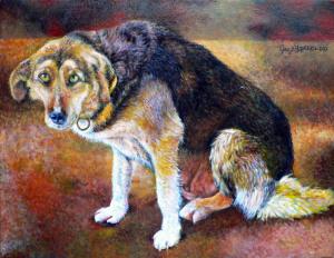 Zani 35 x 45 cm – acrylic on canvas