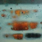 Garden - 70 x 100 cm - Oil on canvas